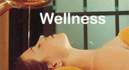 wellness_klein